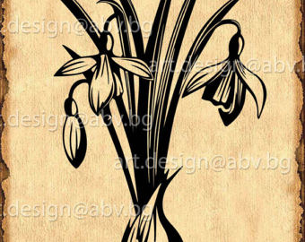 White Rain Lily svg #15, Download drawings