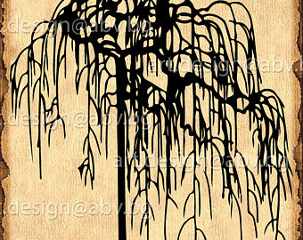 Weeping Willow svg #4, Download drawings