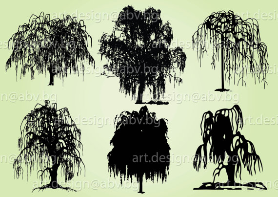 Weeping Willow svg #17, Download drawings