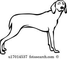 Weimaraner clipart #17, Download drawings
