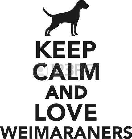 Weimeraner clipart #4, Download drawings
