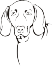Weimeraner coloring #14, Download drawings