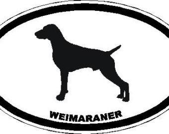 Weimaraner svg #9, Download drawings