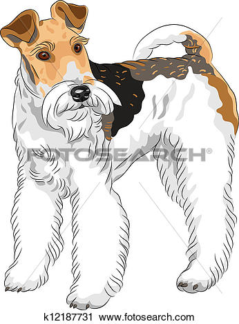 Welsh Terrier clipart #12, Download drawings
