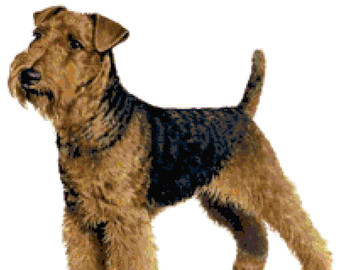 Welsh Terrier clipart #14, Download drawings