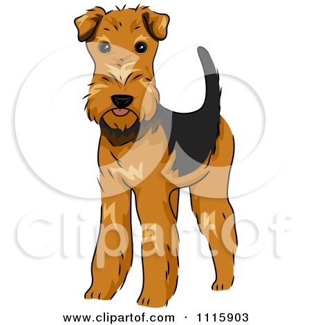 Welsh Terrier clipart #20, Download drawings