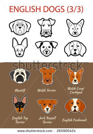 Welsh Terrier svg #4, Download drawings