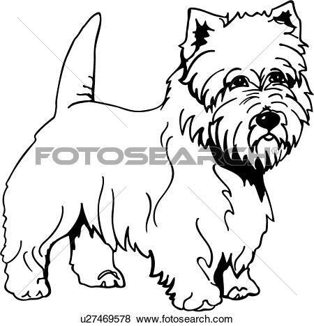 West Highland White Terrier clipart #18, Download drawings