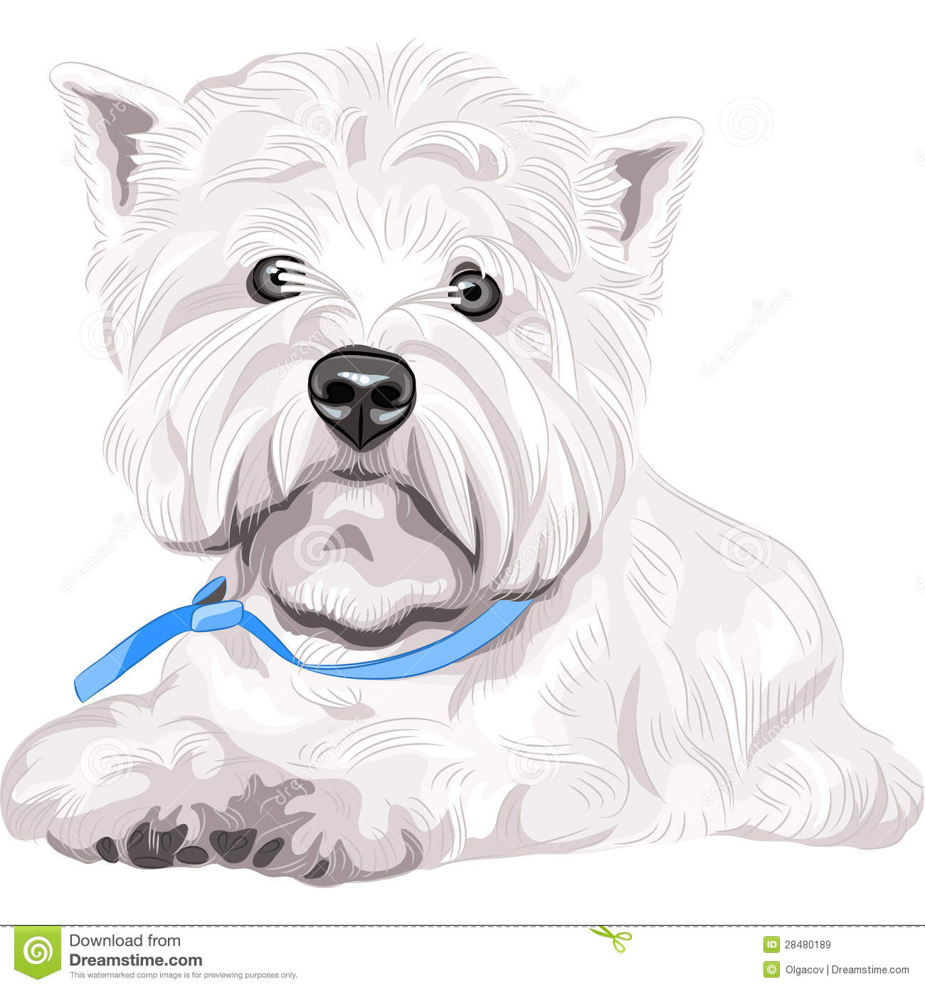 West Highland White Terrier clipart #14, Download drawings