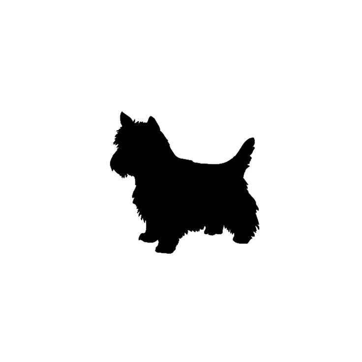 West Highland White Terrier svg #12, Download drawings