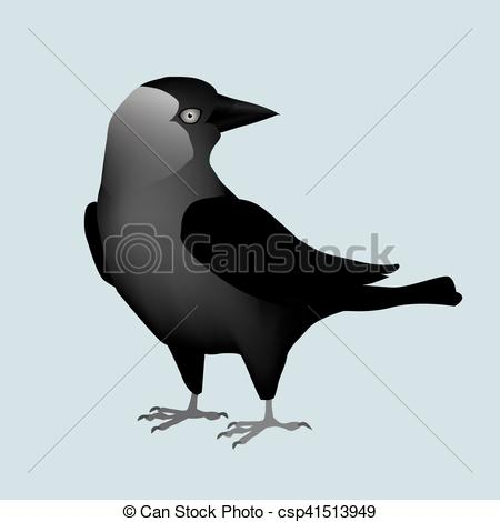 Western Jackdaw clipart #18, Download drawings