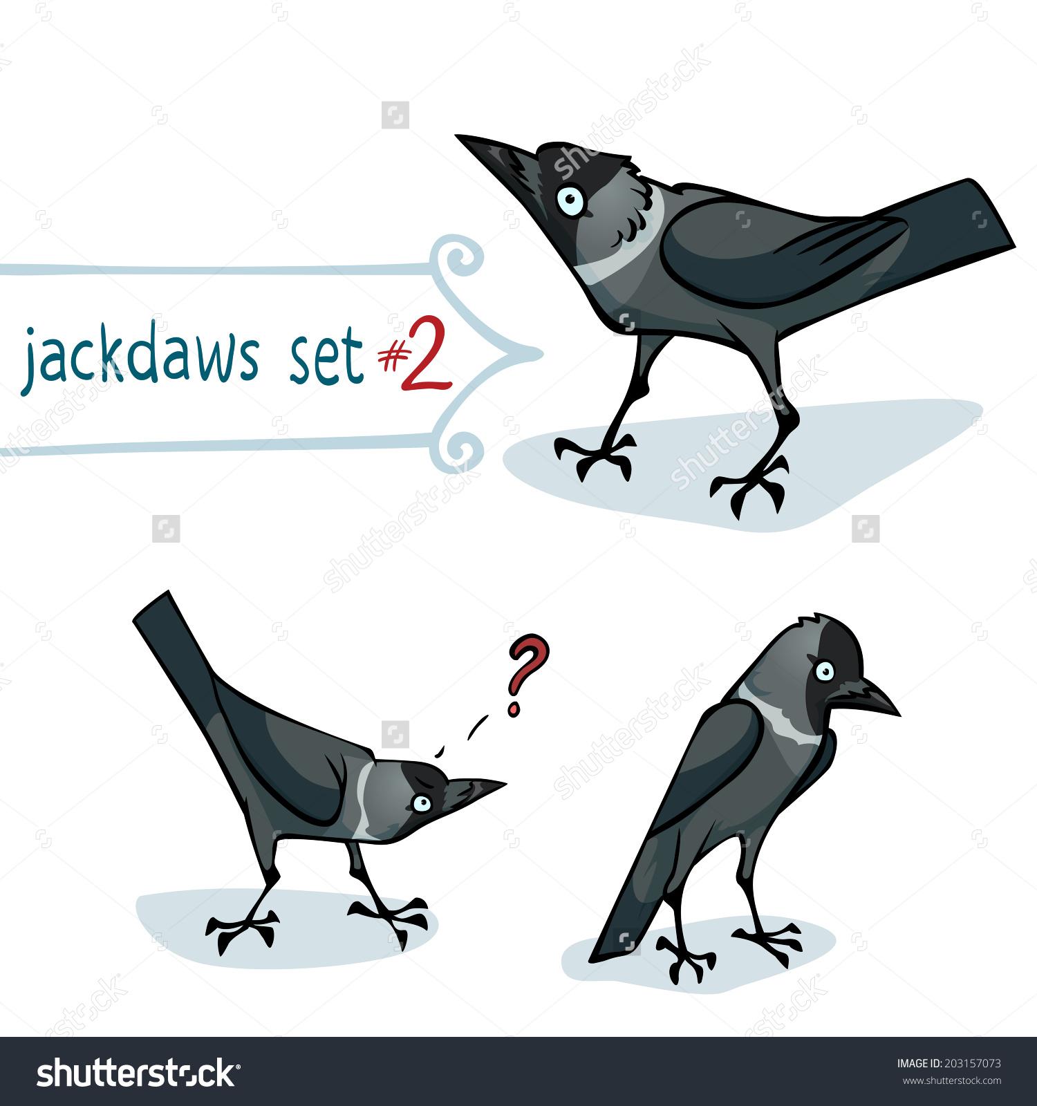 Western Jackdaw clipart #1, Download drawings