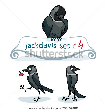 Western Jackdaw clipart #10, Download drawings