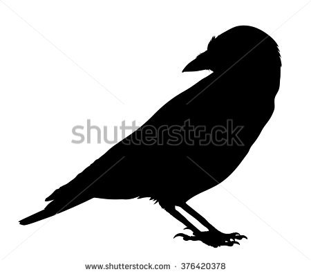 Western Jackdaw clipart #20, Download drawings