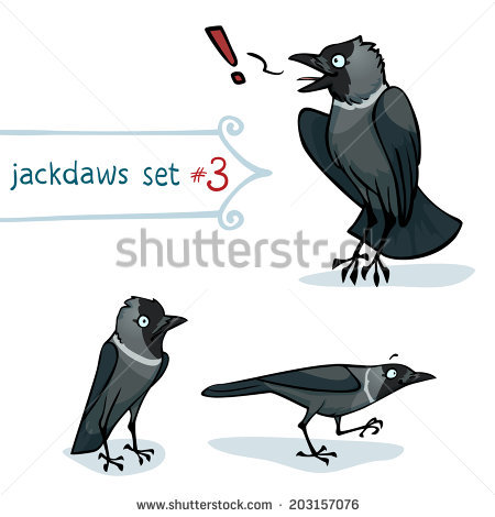 Western Jackdaw clipart #17, Download drawings