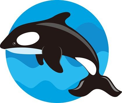 Whale clipart #11, Download drawings