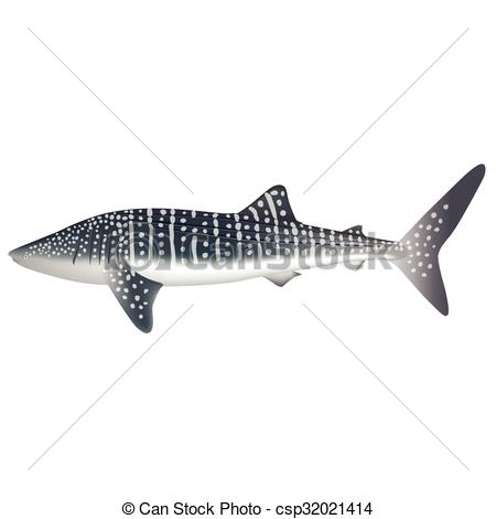 Whale Shark clipart #8, Download drawings