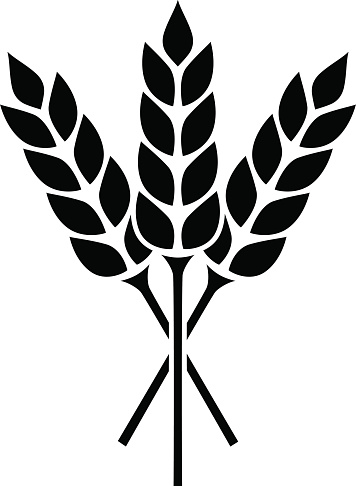 Wheat clipart #10, Download drawings