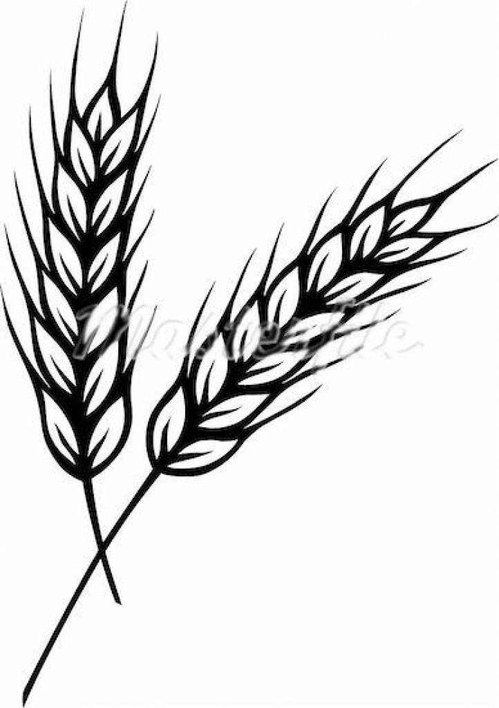 Wheat clipart #6, Download drawings