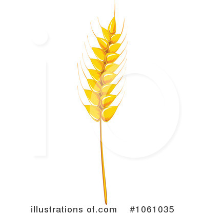 Wheat clipart #7, Download drawings