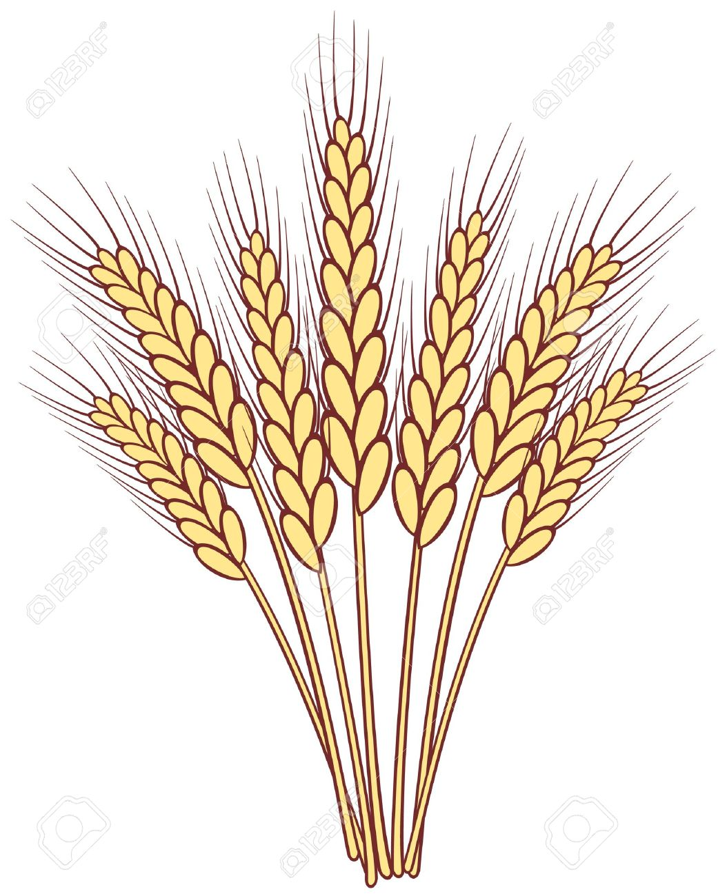 Wheat clipart #20, Download drawings