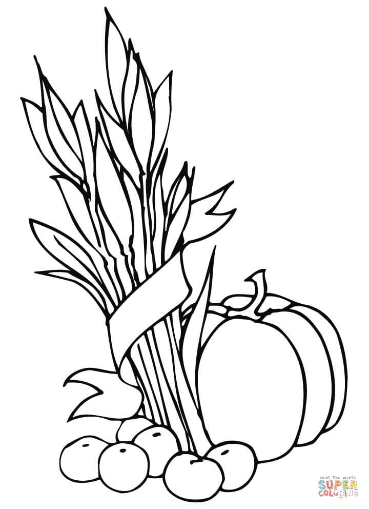Wheat Sheaf Apples And Pumpkin Coloring Page