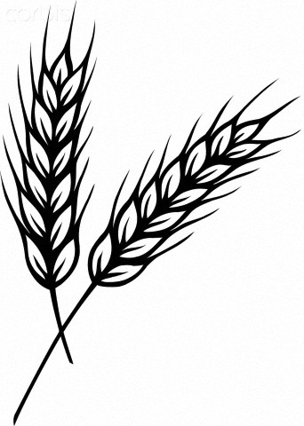 Wheat svg #6, Download drawings