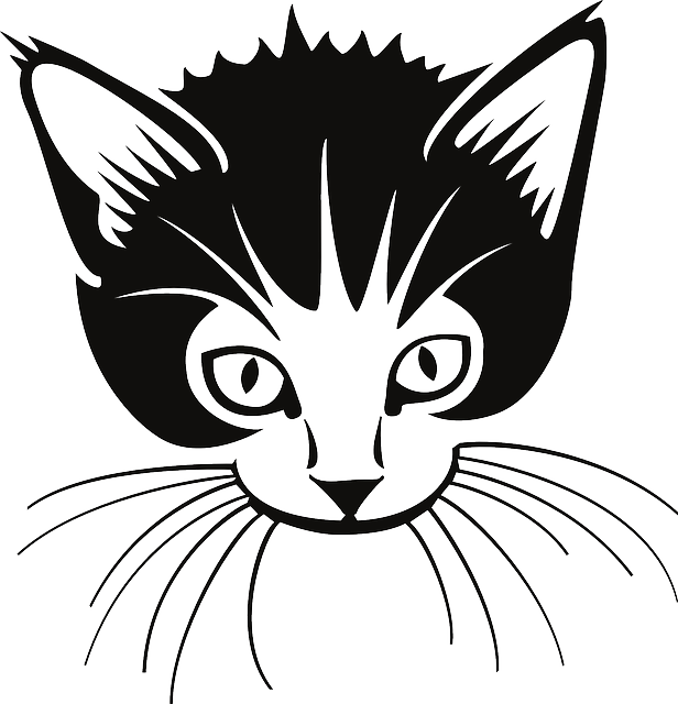 Whiskers clipart #2, Download drawings