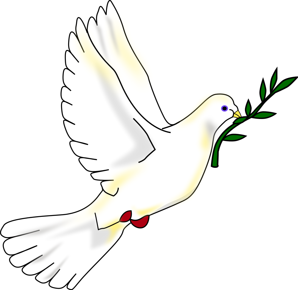 White Dove svg #20, Download drawings
