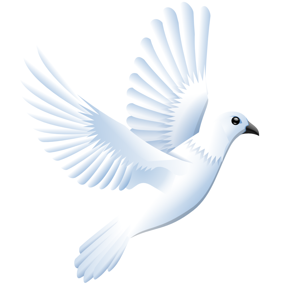 White Dove svg #7, Download drawings