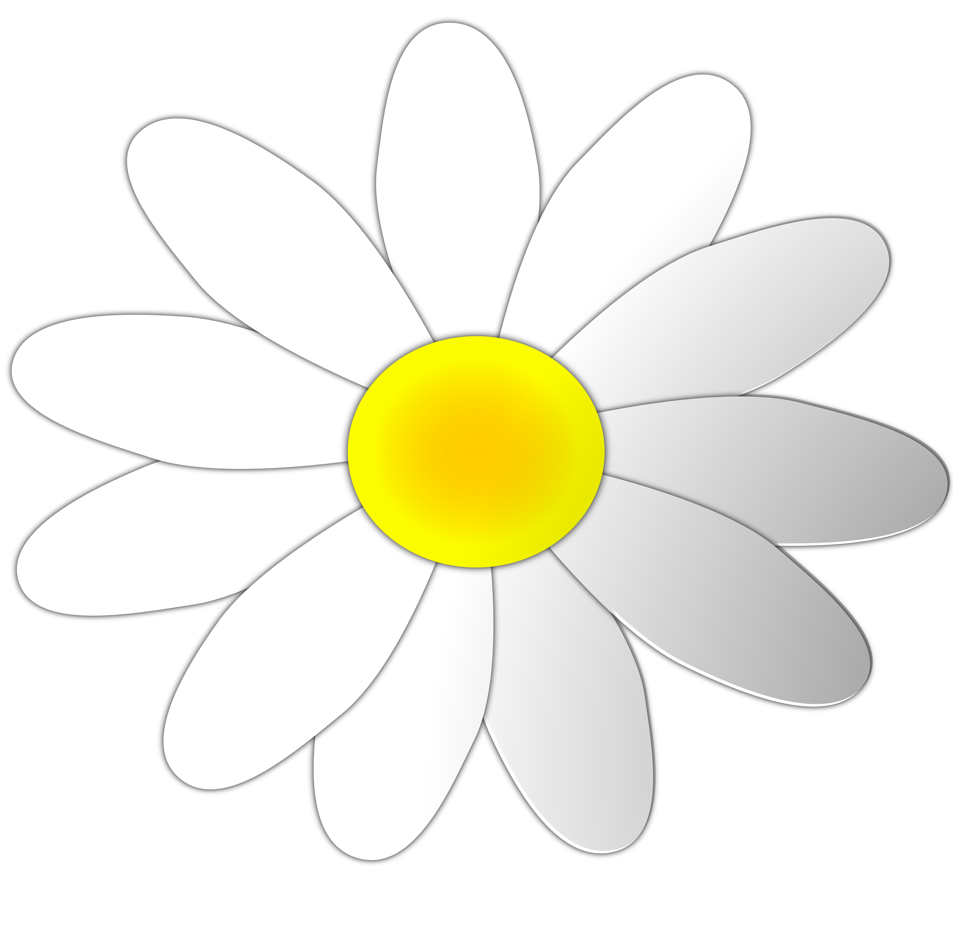 White Flower clipart #6, Download drawings