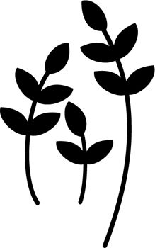 White Flower svg #11, Download drawings