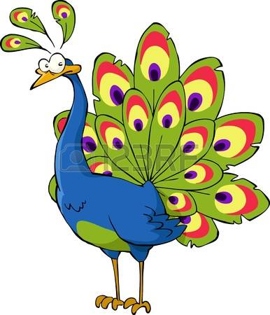White Peafowl clipart #10, Download drawings
