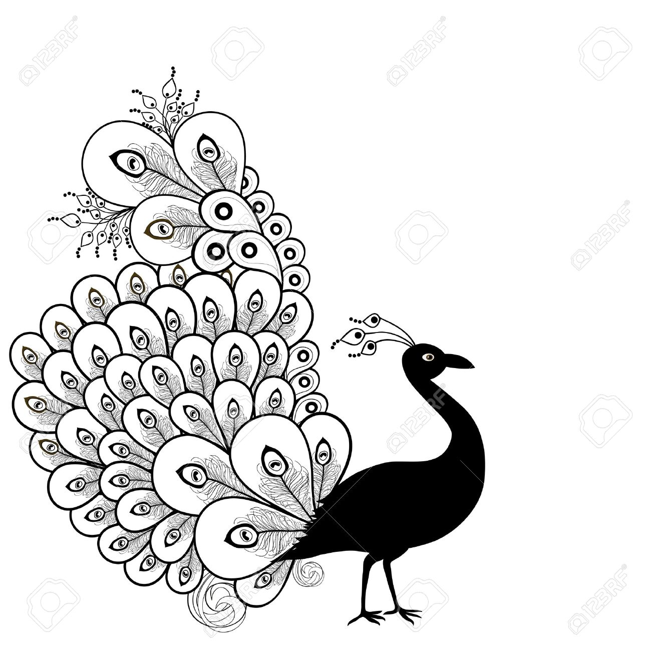White Peafowl clipart #18, Download drawings