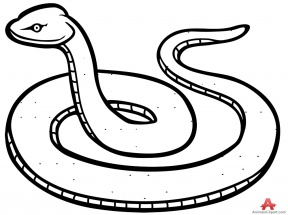 White Python clipart #9, Download drawings