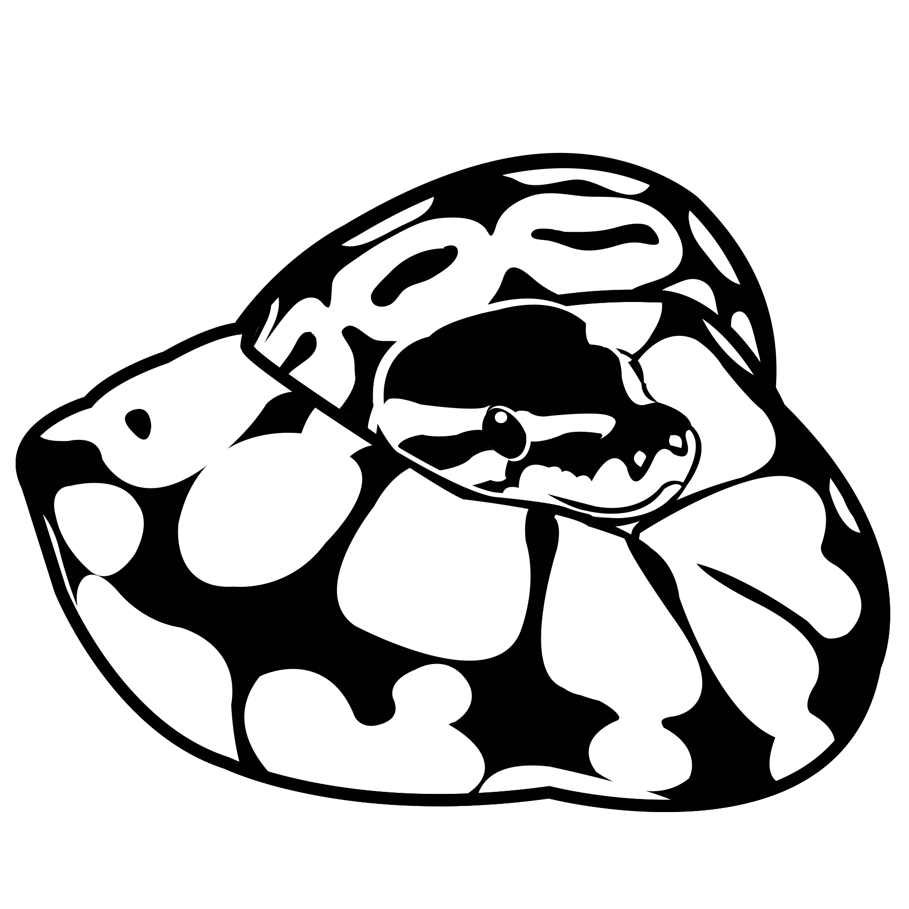 White Python clipart #1, Download drawings