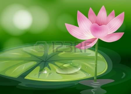 White Rain Lily clipart #18, Download drawings