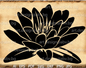 White Rain Lily svg #19, Download drawings