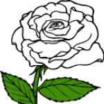 White Rose clipart #6, Download drawings
