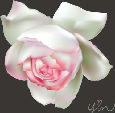 White Rose svg #13, Download drawings