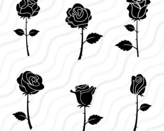 White Rose svg #7, Download drawings
