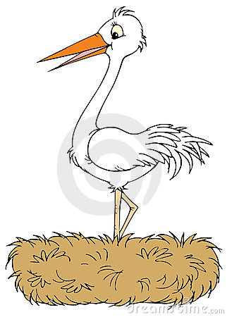 White Stork clipart #9, Download drawings