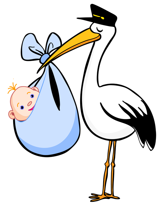 White Stork clipart #12, Download drawings