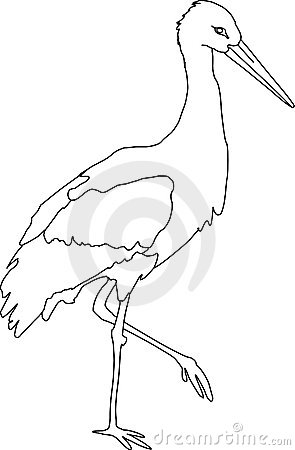 White Stork clipart #20, Download drawings