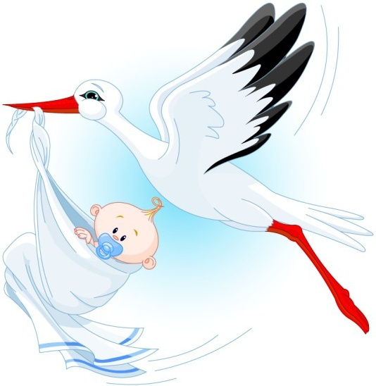 White Stork svg #12, Download drawings