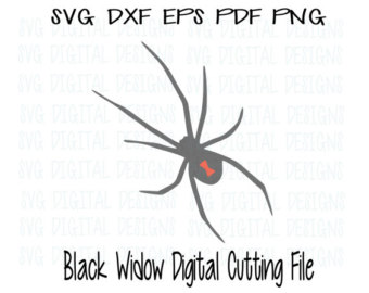 White Tail Spider svg #13, Download drawings