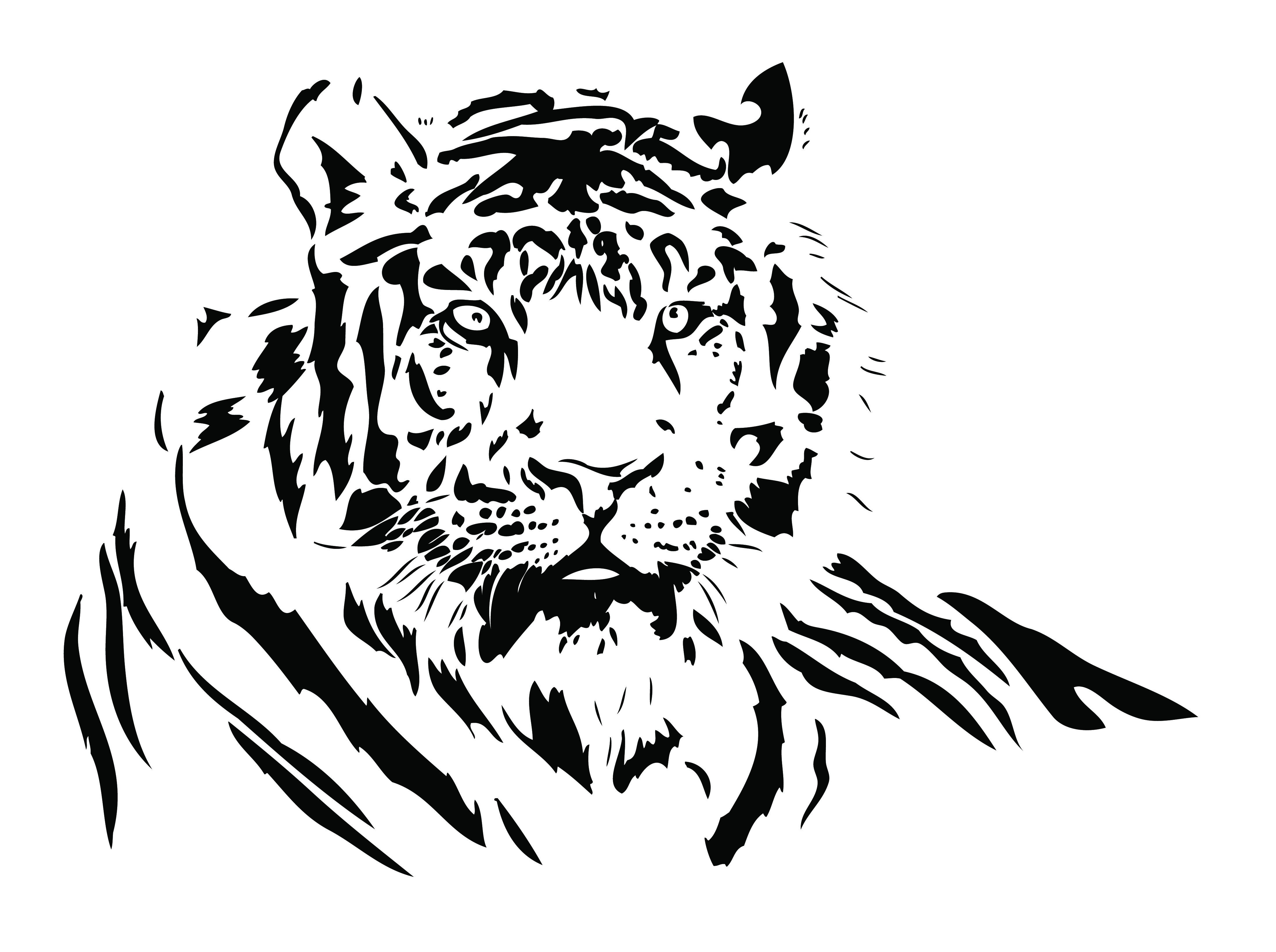 White Tiger svg #10, Download drawings