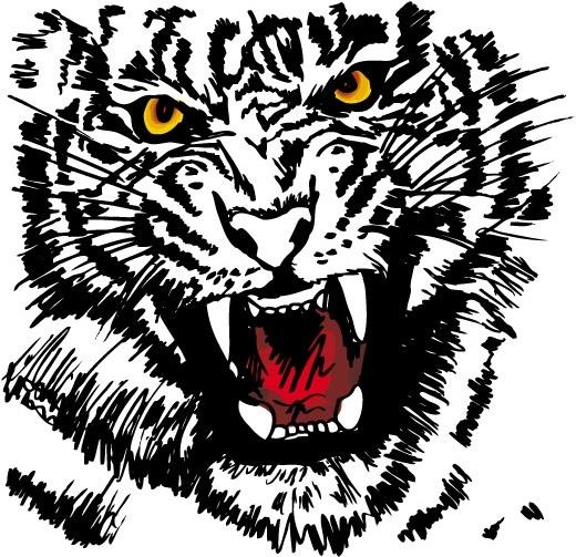 White Tiger svg #5, Download drawings
