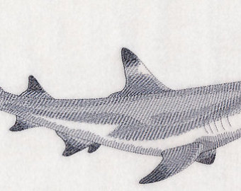 White Tipped Reef Shark clipart #8, Download drawings