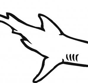 White Tipped Reef Shark coloring #14, Download drawings